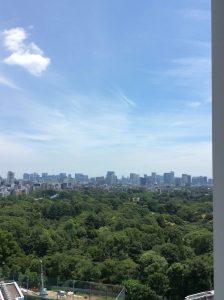 takashimaya view